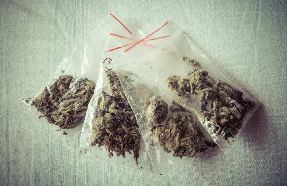 Drogen - Marihuana - Polizei - Hameln - neueWoche