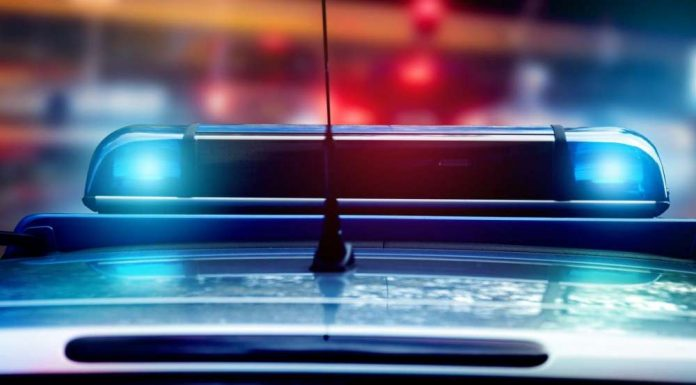 Blaulicht - Polizei