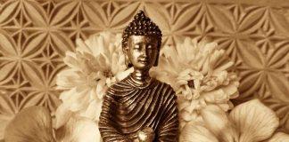 Buddha - Web - neueWoche