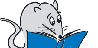 Rattenfänger-Literaturpreis Logo