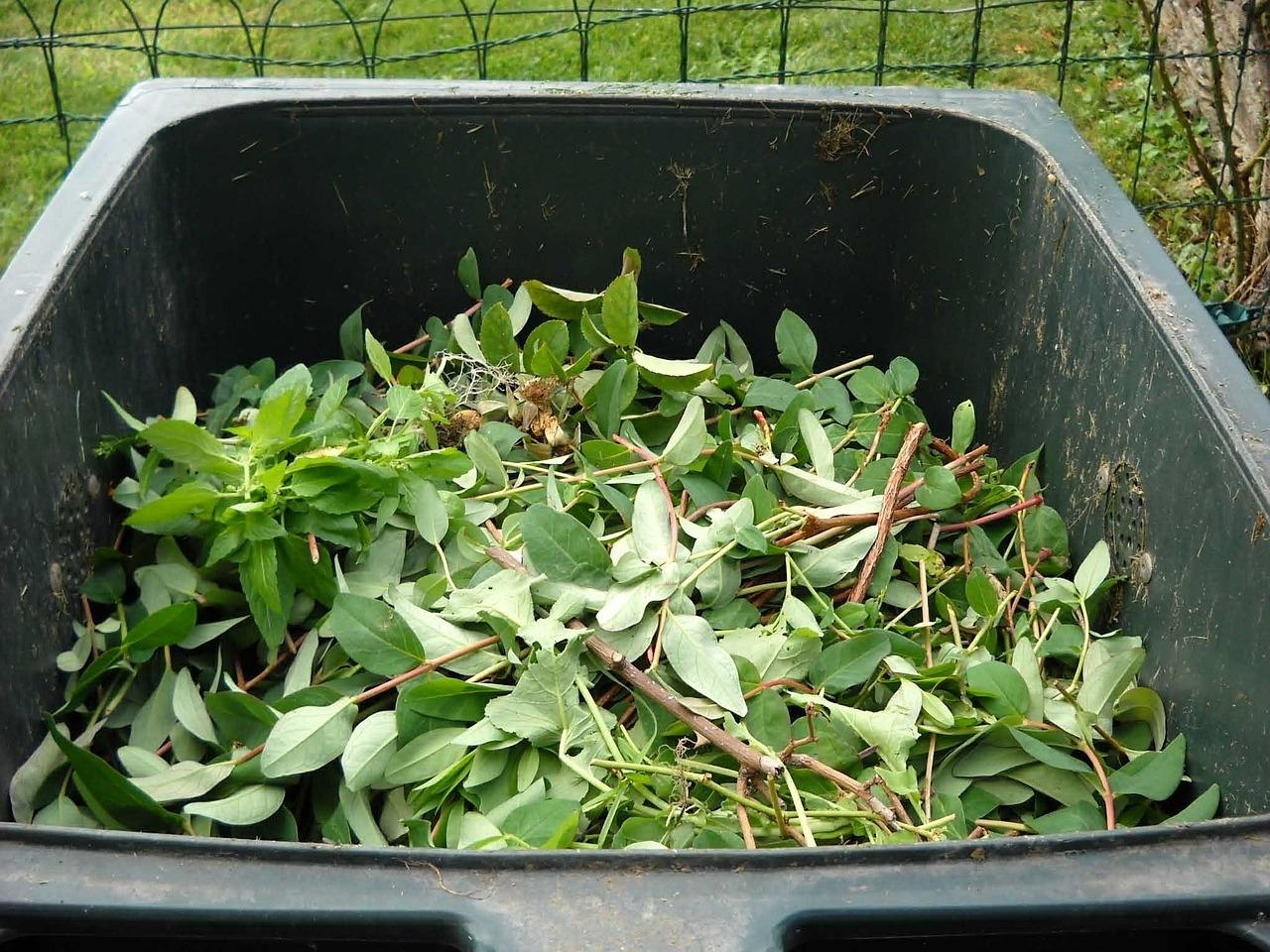 Grünschnitt Müll Biotonne Grünabfälle
