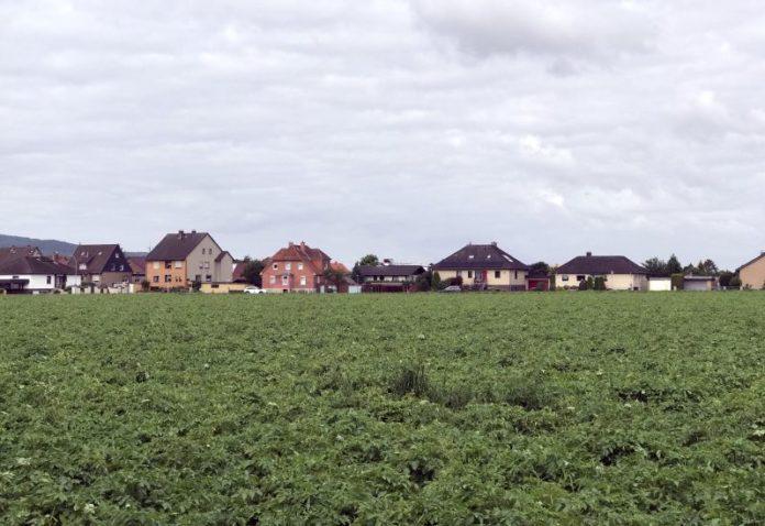 Hessisch Oldendorf - Kartoffelfeld - Bauflächen