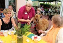 ProSenis Seniorendomizil - Sommerfest