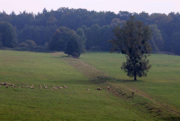 Bückeberg - Emmerthal