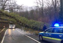Baum Sturm umgekippt