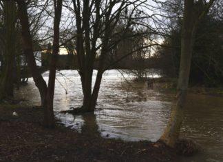 Weser Hochwasser Hameln