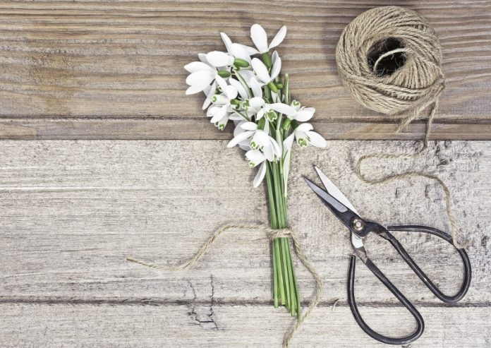 Basteln im Frühling
