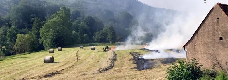 Feuer_Feuerwehr_Lügde_Feld