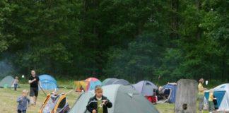 Mittsommer_Wisentgehege_Springe_Camping