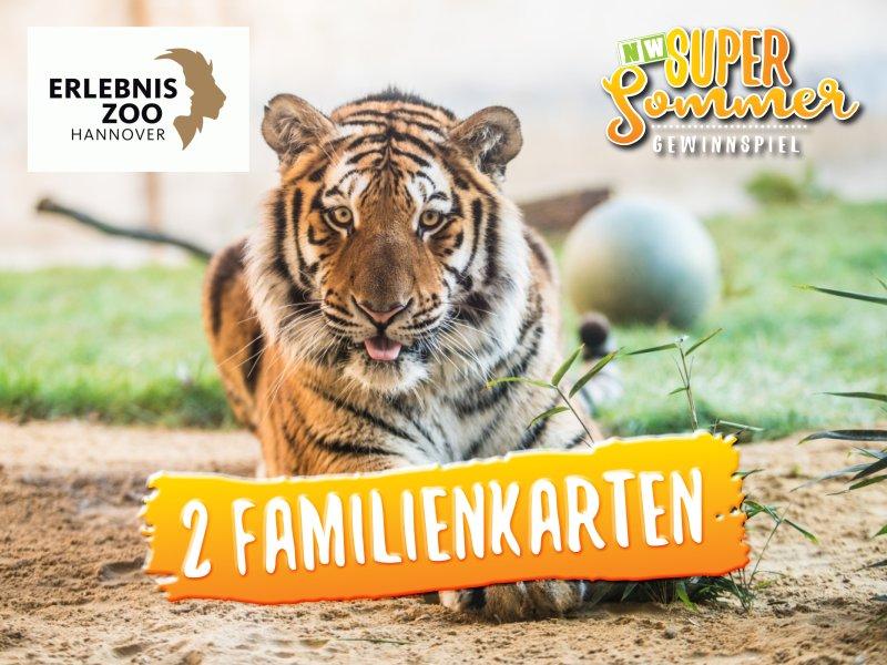 Sommer-Gewinnspiel-2019_Zoo hannover