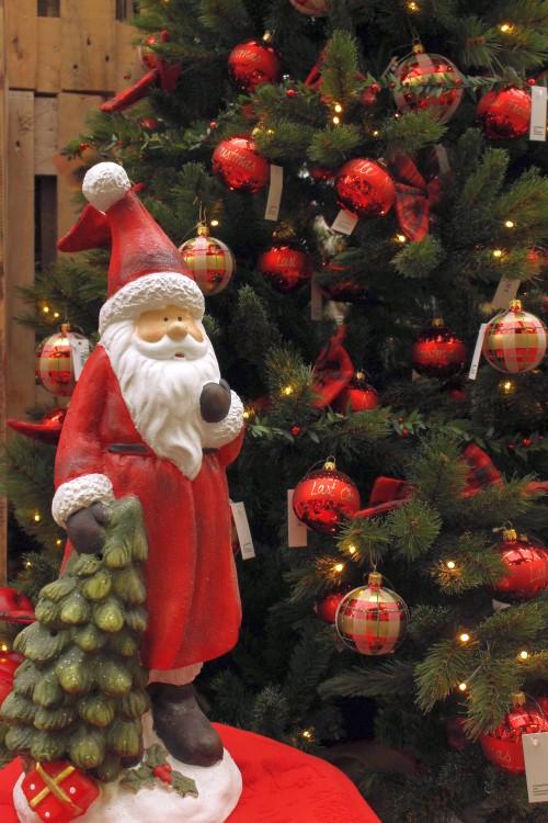 Traumhafte Weihnachten Mit Dem Gartencenter Neumann Nachrichten Hameln